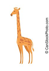 Giraffe Giraffa Camelopardalis Cartoon Animal - Giraffe...