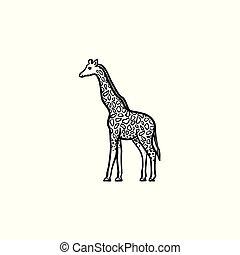 Giraffe hand drawn sketch icon.