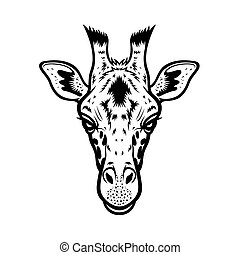 Giraffe Head BW - giraffe head vector graphic illustration...
