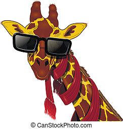 giraffe in sunglasses - illustration of giraffe in a red...