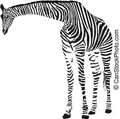 Giraffe in the Zebra camouflage
