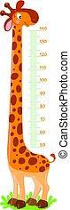 Giraffe meter wall or height chart
