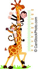 Cheerful funny giraffe, tiger and monkey. Height chart or meter wall or wall sticker. Childrens vector illustration with scale from 50 to 140 centimeter.