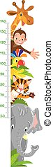Cheerful funny giraffe, tiger, elephant, parrot and monkey. Height chart or meter wall or wall sticker. Childrens vector illustration with scale from 50 to 140 centimeter.