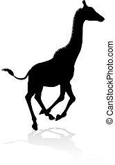 Giraffe Safari Animal Silhouette - A high quality giraffe...