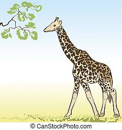 Giraffe. Vector Illustration