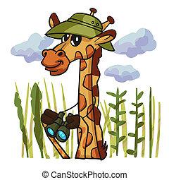 giraffe, watcher, karikatur, vogel