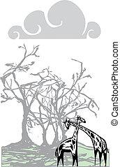 Giraffes beneath a tree - Two giraffes beneath a tree in the...
