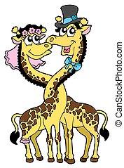 Giraffes wedding 2 - Two giraffes - like bride and groom....