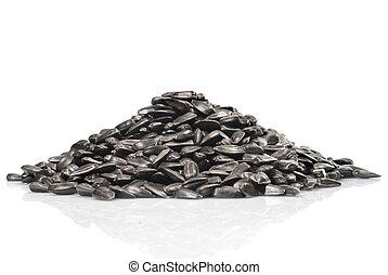girasole, isolato, semi, mucchio, fondo, nero, bianco