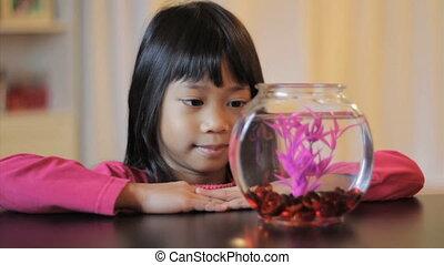 Girl Admiring Her Purple Betta Fish - A cute little 5 year...