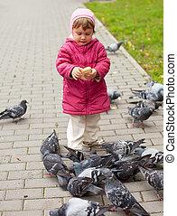 girl, alimentation, parc, pigeons