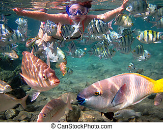 girl among tropical fish