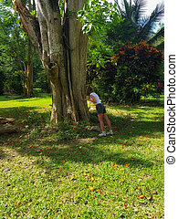 girl and a big tree