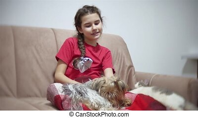 girl and a dog. girl is sitting on the couch watching TV,...