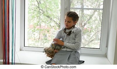 girl and a dog. teen girl holding a yorkshire terrier sits...