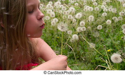 Girl and Dandelions Flight - Girl with long blond hair blows...