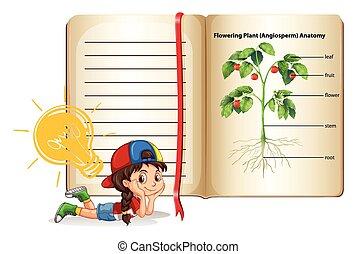 Girl and flowering plant anatomy illustration
