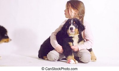 Girl and puppy of a bernese shepherd dog