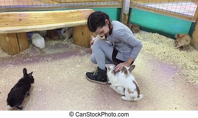 Girl and rabbit. Girl teenager stroking small rabbits, the...