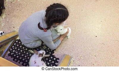 Girl and rabbit. Girl teenager stroking small rabbits,...