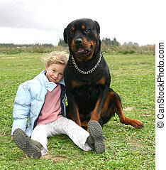 girl and rottweiler - little girl and her big dog purebreed...