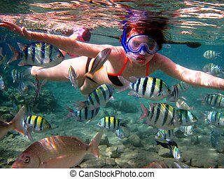 girl and tropical fish
