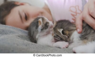 girl and two cute kittens concept - happy little girl with...