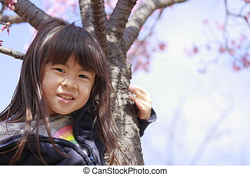 girl, années, japonaise, fleurs, (5, cerise, old)