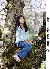girl, arbre, couvert, vieux, dix, séance, fleurs, cerise, année