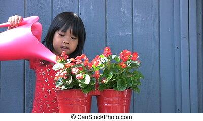 girl, arroser fleurs