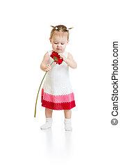 girl, bébé, adorable, isolé, debout, fleur, rouges, regarder