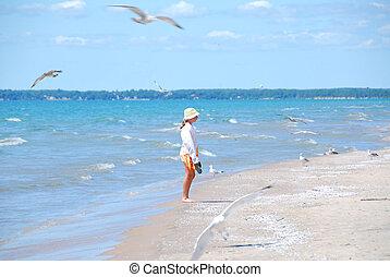 Girl beach seagulls