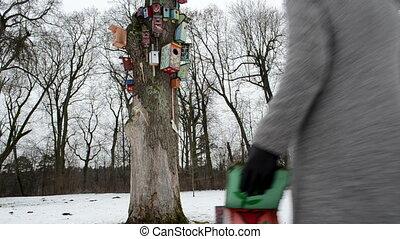 girl bird nest house hang - careful girl in grey coat carry...