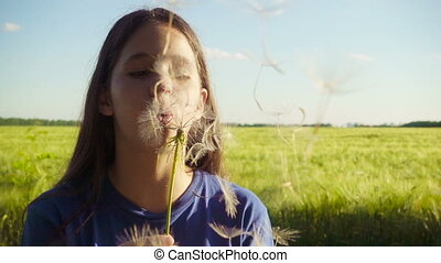 Girl blowing up the dandelion seeds on green field