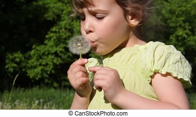 girl blows flower on meadow
