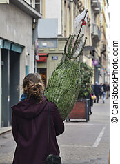 Girl bought a christmas tree