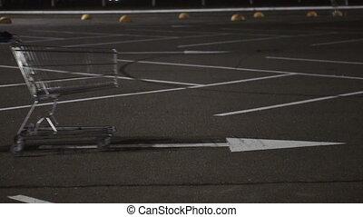 Girl carrying a shopping cart