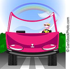 girl-cat in the car