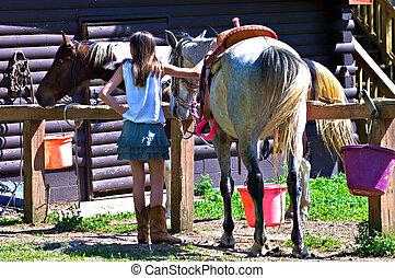 girl, cheval, grange