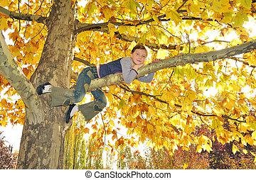 girl climbed on tree