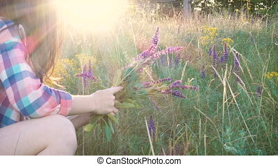 Girl collects flowers of salvia at the sunset time