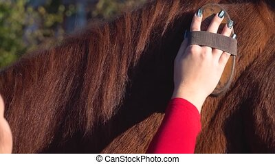 Girl combing horse's mane with a brush. Slow motion. Close...