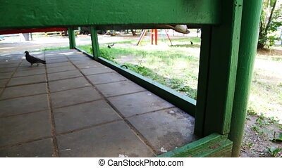 girl costs on handrail of gazebo among children's playground...