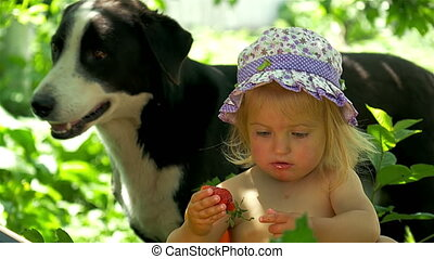 Girl eating strawberries in the berry meadow.
