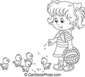 Girl feeding chicks - Little girl feeds a brood of small...
