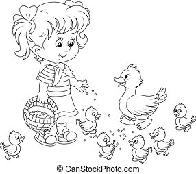 Little girl feeds a white duck and small ducklings