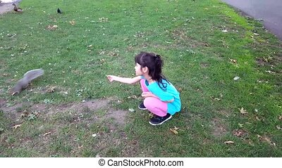 Girl feeding squirrel in the park. Girl play outdoors. Kid...