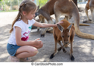 Girl feeds a kangaroo at the Australian Zoo Gan Guru in...