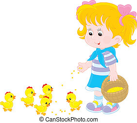 Girl feeds chicks - Little girl feeding small yellow...
